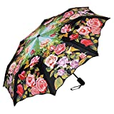 VON LILIENFELD Regenschirm Taschenschirm Stabil Leicht Auf-Zu Automatik Damen Floral Rosa Blumen Rosengarten