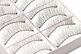 10 Pairs Natural Handmade Soft False Eyelashes / Fake Eye Lashes Set by Cheeky