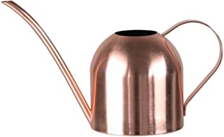 1000ML Stainless Steel Long Mouth Watering Can,Rose Gold Watering Pot Metal Watering Kettle for House Plant Indoor Outdoor