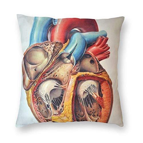 YHKC Funda de almohada decorativa para el hogar con carta de corazón de anatomía humana, funda de almohada decorativa cuadrada de felpa suave y liviana, funda de cojín de 18 x 18 pulgadas, embutidora,