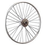 Taylor-Wheels 28 Pouces Roue arrière vélo YAK19 Roue Libre à Visser 8 Argent