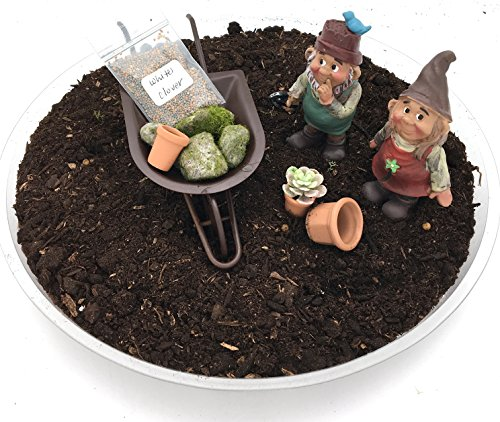 DIY de gnomo de jardín (jardín de hadas miniatura de gnomo–niño y niña con carretilla y juego de accesorios
