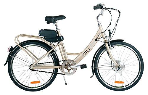 WAYEL Bici elettrica con pedalata assistita Modello City Potenza Batteria 2200W/24 V 8,8 Ah