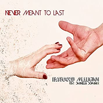 Never Meant to Last