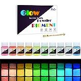 Pigmento di Resina Epossidica Fluorescente - 10 x 25g Polvere Fluorescente Resina per Resi...