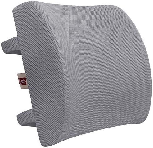 LOVEHOME Memory Foam Lumbar Support Back Cushion with 3D Mesh Cover Balanced Firmness Designed for Lower Back Pain Relief- Ideal Back Pillow for Computer/Office Chair, Car Seat, Recliner etc. -Azure