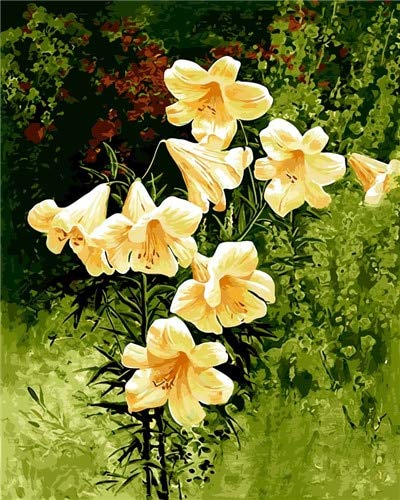 beau look États Unis produits chauds Vienna lily picture DIY digital white flower oil painting flowers home  decor wall art for room decor cotton painting by numbers 40x50cm no frame  ...