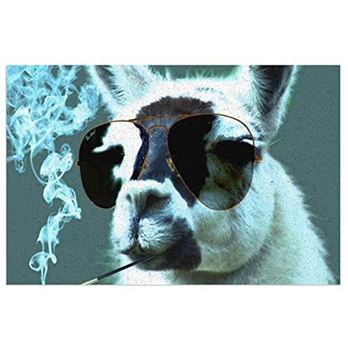 FFLSDR Felpudo Alfombra de Entrada Antideslizante Alfombra Llama con Gafas de Sol geniales Fumar Bienvenida Entrada de PVC Almohadilla de Patio 40X60CM