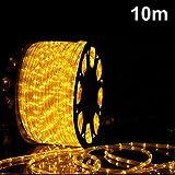 Nakeey 10M LED Schlauch Lichterkette Außen, LED Lichterschlauch 100 LED Lichter mit 8 Modi Innen und Außenbereich Lauflichter für Saal, Garten, Weihnachten, Hochzeit, Party - Warmweiß