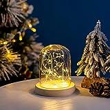 Glasseam Cloche de Cúpula de Vidrio Pequeño Transparente Cúpula de Cristal con Luz LED de Hadas Luces LED en Cúpula de Cristal para la Pantalla de La Lámpara