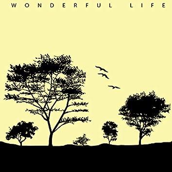 Wonderful Life Pt. I