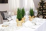 Dekostoff Glitzer Gold, 28 cm x 2,50 m | Tischläufer | Tischband | Tischdeko | Dekoration Weihnachten, Advent, Silvester - 2