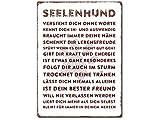Interluxe Wandschild Metallschild - Seelenhund - 300x220mm Schild als Geschenk für Menschen mit Hund