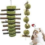 giocattolo da masticare per conigli, ramo di mela + palla di erba con torta di fieno (2 pezzi), giocattolo molare per animali domestici naturali, usato per coniglio, cincillà, criceto