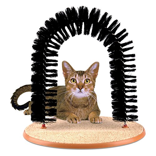 Prime Paws Arche de massage et toilettage avec herbe à chat