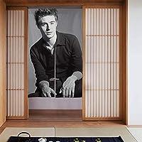 ドアカーテン, Max Irons マックスアイアンズ 遮熱 カーテン おしゃれ 和風 断熱 ドア用網戸 部屋仕切り 玄関 キッチン リビング 飲食店 出入り口 幅86㎝x丈143㎝