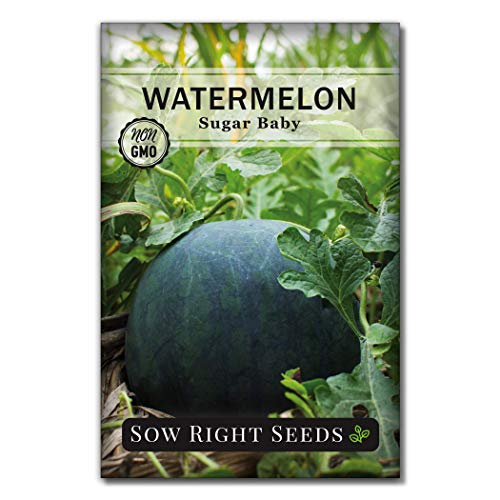 Sow Right Seeds - Sugar Baby Watermelon Seed for Planting - Non-GMO...