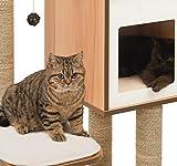 """Vesper Katzenmöbel """"High Base"""" walnut – Kubus-Höhle mit zwei Plattformen - 8"""