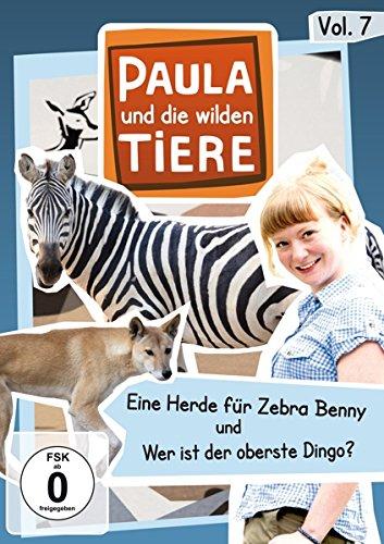 Paula und die wilden Tiere Vol. 7  -  Eine Herde für zebra Benny/Wer ist der oberste Dingo?