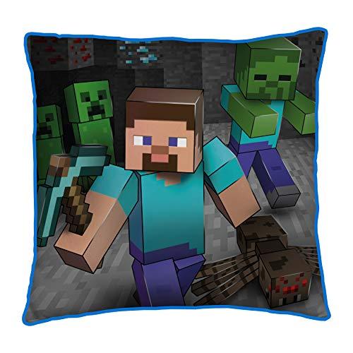 Minecraft Cojín Cuadrado de Dos Caras para Cama Cualquier habitación Infantil o Dormitorio, Multicolor