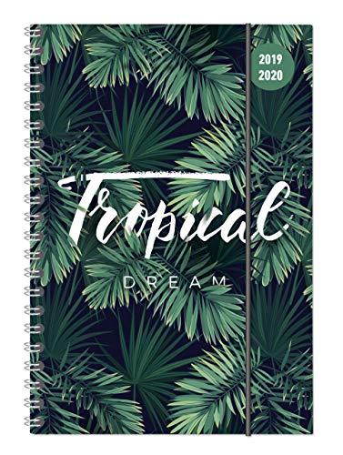Collegetimer Jungle 2019/2020 - Dschungel - Schülerkalender A5 (15 x 21) - Ringbindung - Weekly - 224 Seiten - Terminplaner