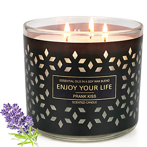 Large Jar Candles for Home Scented 3 Wick Barn Candles Lavender Stress Relief Aromatherapy Candle Gifts for Women Soy Wax 14.6 Ounce 125 Hours