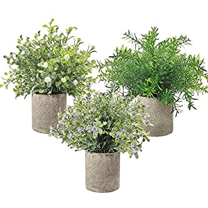 Andifany 3 Pack Small Potted Artificial Plastic Plants, Fake Rosemary Plant Faux Flower Houseplants for Home Decor Indoor