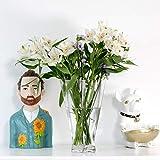 Saidan SD Vaso in vetro trasparente a forma di fiore, design originale, decorazione per la casa, regali originali fiori, piante, decorativo, 25 cm