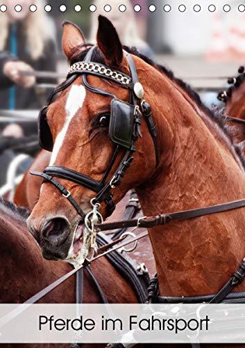 Pferde im Fahrsport (Tischkalender 2021 DIN A5 hoch)
