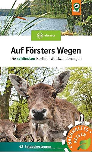 Auf Försters Wegen: Die schönsten Berliner Waldwanderungen