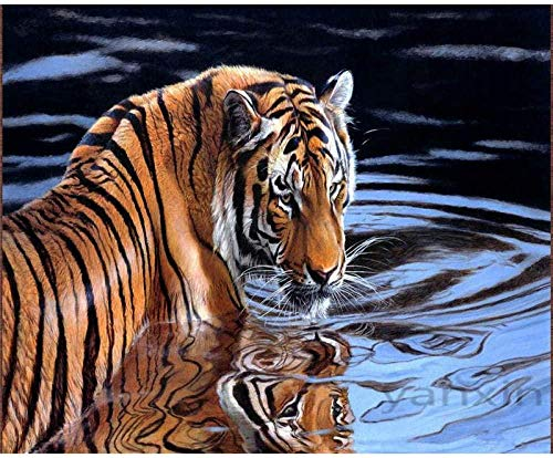 DJHYT Pintura por Números para Pintados a Mano Obra de Arte de Regalo Decoración Arte-No Frame-40x50cm