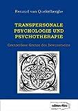 Transpersonale Psychologie und Psychotherapie: Grenzenlose Grenze des Bewusstseins (Edition Klotz)