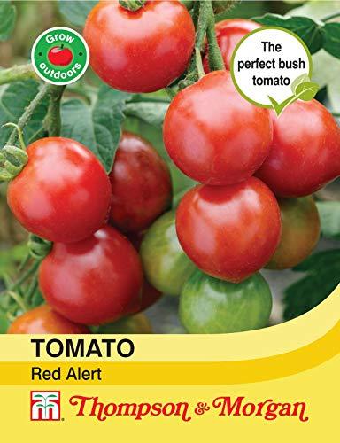 Thompson et Morgan???L?gumes???Alerte Rouge tomate Graines de Bush???30