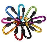 QH-Shop Moschettone, Moschettoni in Alluminio 10 Pezzi Colors Assortiti D-Ring Portachiavi...