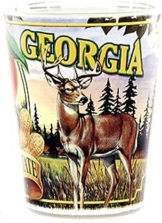 Georgia State Mural Shot Glass