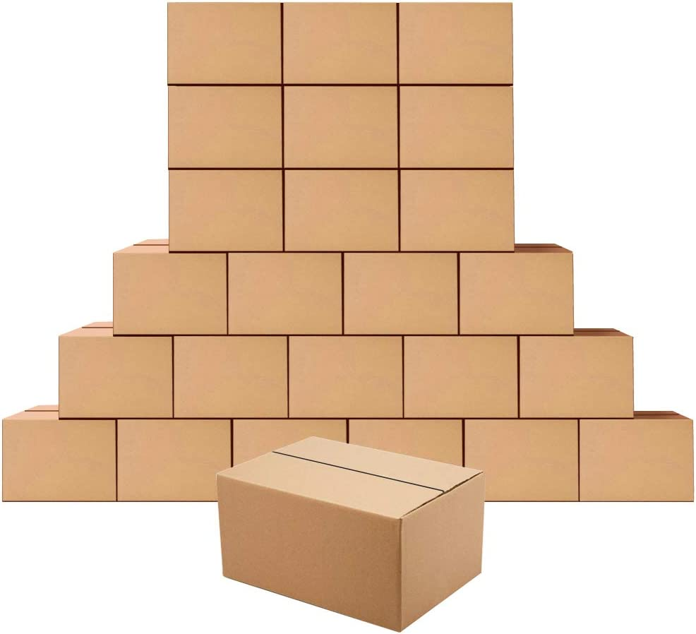 Edenseelake Cardboard Boxes 8 x 6 Boxe Spasm Ranking TOP3 price 4 Small inches Shipping