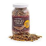 Fluker's Bearded Dragon Medley Treat Food, 3.2-Ounce (72023)
