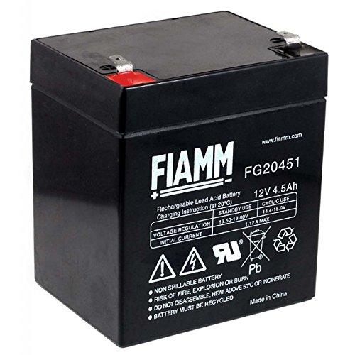 FIAMM Batería de Plomo-ácido FG20451