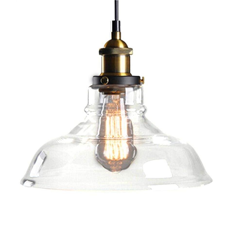 襲撃印象的しがみつく北ヨーロッパおよびアメリカ様式の農村産業風の創造的な単一のヘッドガラスランプシェード