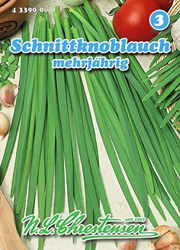 Schnittknoblauch mehrjährig N.L.Chrestensen Samen 433900-B