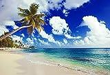 Fondo de fotografía de Playa Tropical Junto al mar Verano Boda bebé cumpleaños Ducha Fiesta Foto Estudio telón de Fondo A5 10x7ft / 3x2,2 m