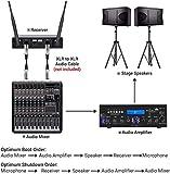 Zoom IMG-2 tonor microfono senza fili doppio