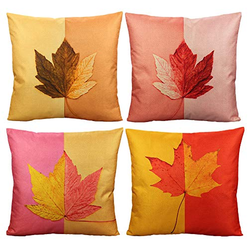Autumn Leaf Pattern - 6