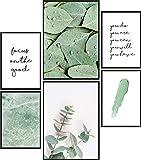 Papierschmiede® Mood-Poster Set Eukalyptus Light | Bilder