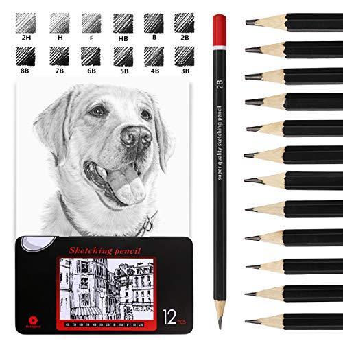 Lápices de dibujo, EooUooIP 12 piezas de lápices de dibujo profesionales Juego de lápices de dibujo 8B -2H, lápiz de arte perfecto para artistas, principiantes, estudiantes, diseñadores… (12 cuentas)