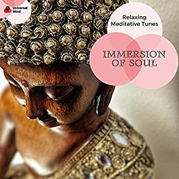 Immersion Of Soul - Relaxing Meditative Tunes