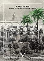 Breve historia de la Literatura Latinoamericana (Ensayo)