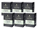 Taylors Green Tea with Jasmine/Té Verde al Gelsomino Fresco e Floreale - 6 x 20 Individually Wrapped and Tagged Tea Bags (240 Gram)