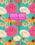 2020-2021 Two Year Planner: Nifty Daily Weekly Monthly 2020-2021 Planner Organizer, Agenda, Schedule and To Do List Journal | Art Cover 00023187