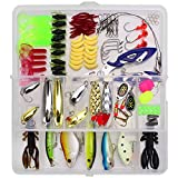 Aneew 101x Bass Fishing Lures Tackle Box Kit Freshwater Crankbaits Trout Spinnerbaits Spoon Accessories Gear Jig Minnow Popper Treble Hooks Full Swimming Layer Topwater Saltwater (TypeA-101pcs)